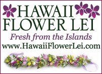 Hawaii Flower Lei logo